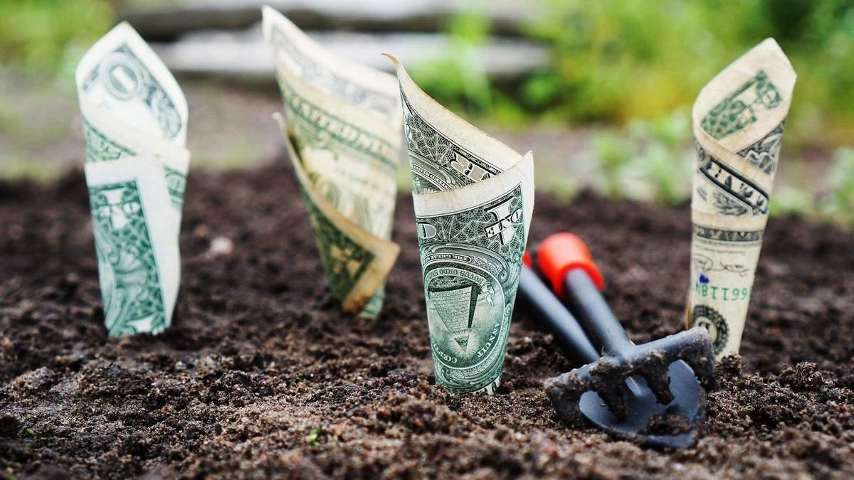 Во что инвестировать деньги с малыми сбережениями: варианты и прибыль