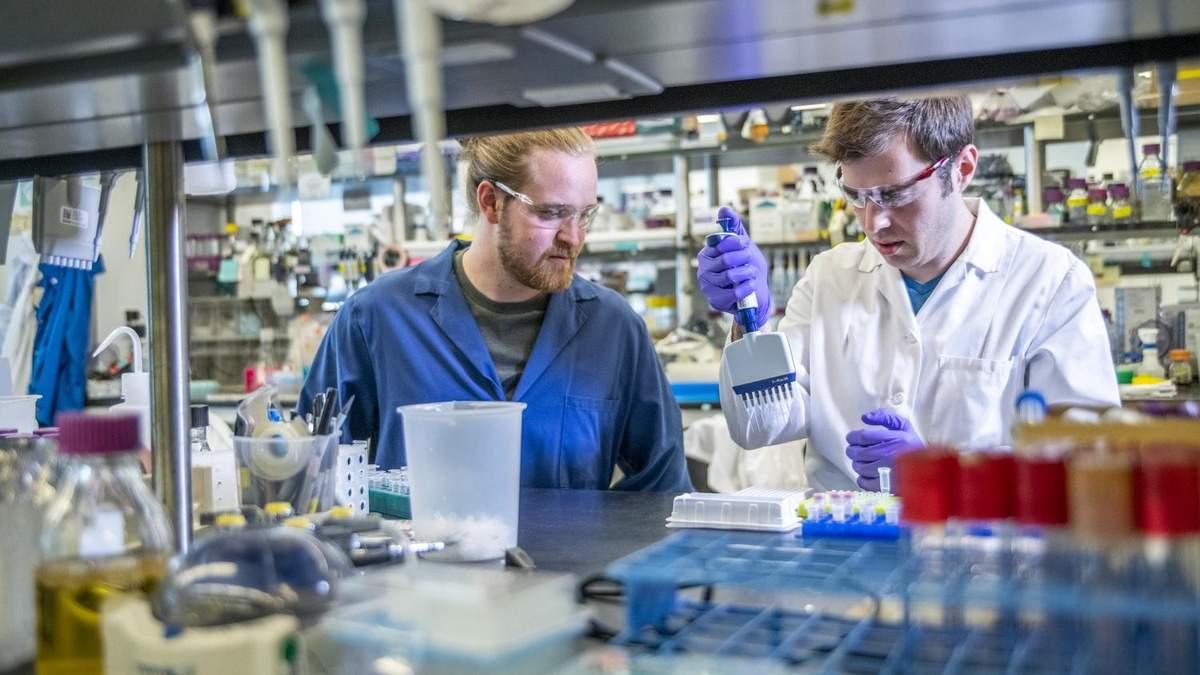 Виготовлення м'яса в лабораторії