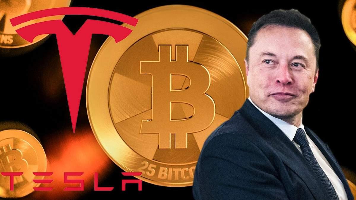 Удачное решение Илона Маска: сколько Tesla зарабатывает на биткойны - новости биткоин - Финансы
