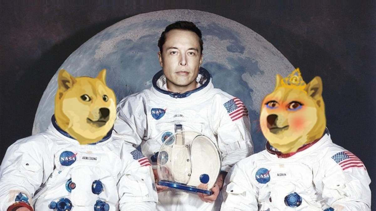 """Нова фаворитка Ілона Маска: """"дружина"""" Dogecoin виросла на 3 000% за день - Новини світу - Фінанси"""