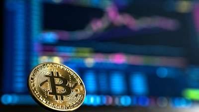 В Amazon рассказали, будет ли компания принимать биткоин: как отреагировала криптовалюта
